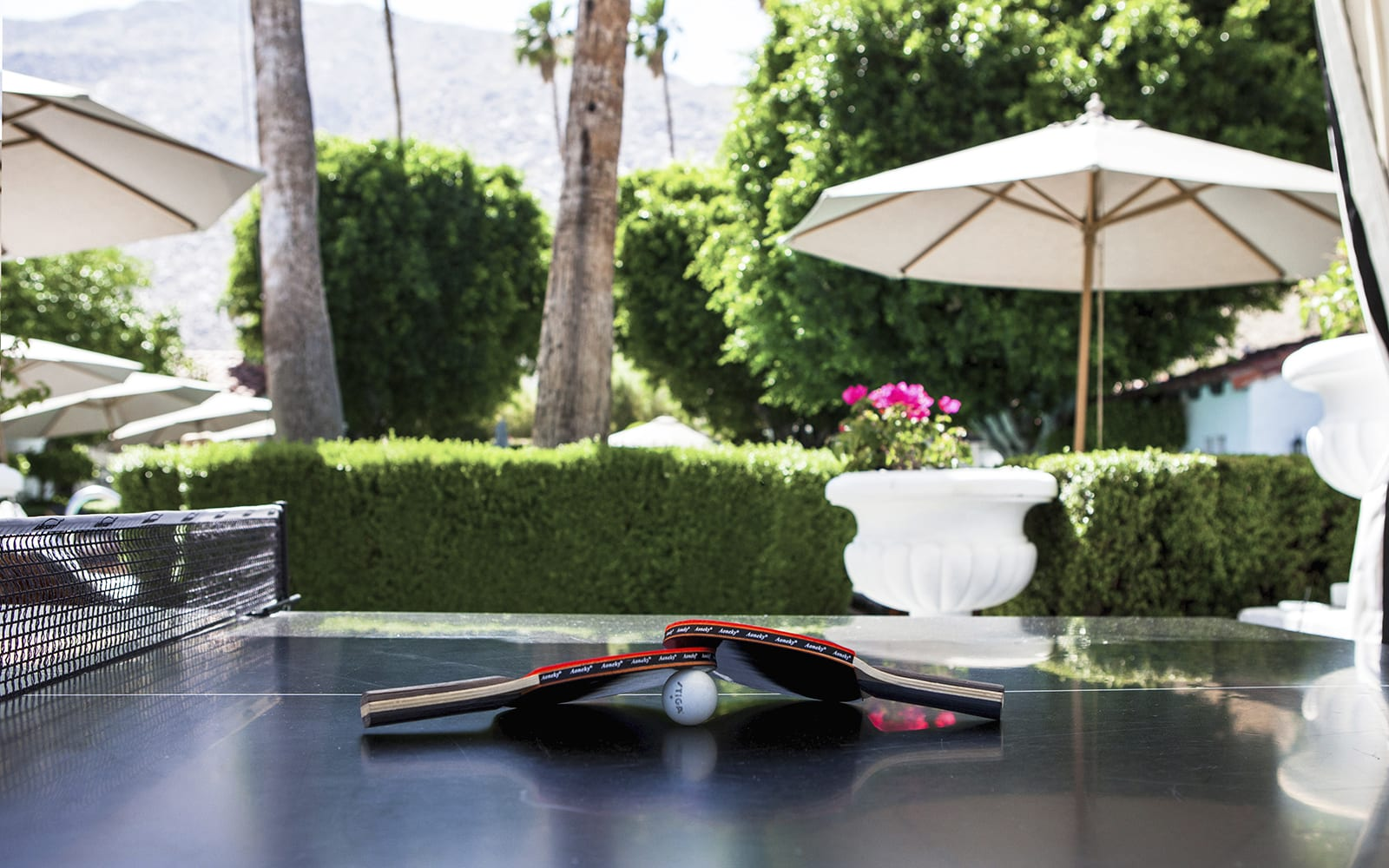 Avalon Palm Springs Ping Pong Table